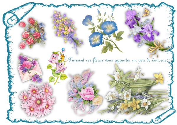 Je vous offres des fleurs for Offre des fleurs